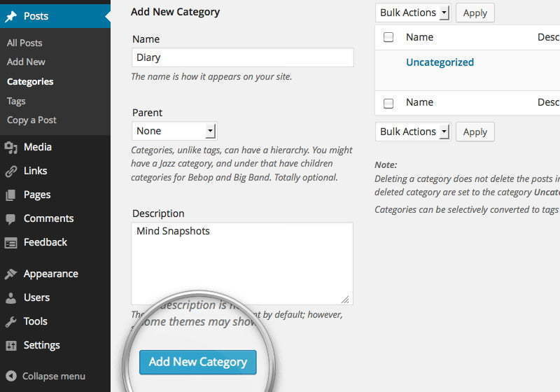 How to publish Category in WordPress