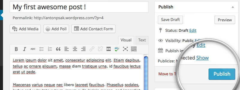 how to publish a post in wordpress